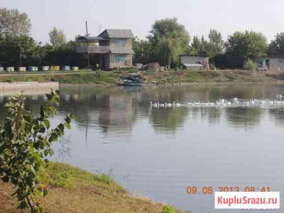 Продам частный пруд Майкоп