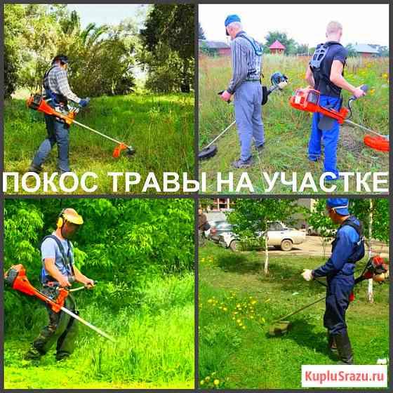 Покос травы Воронеж, косить траву в Воронеже Воронеж
