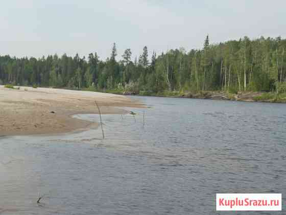 Остров 61га в Лямина Сургутский район Лянтор