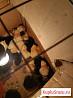 Цыплята домашние суточные