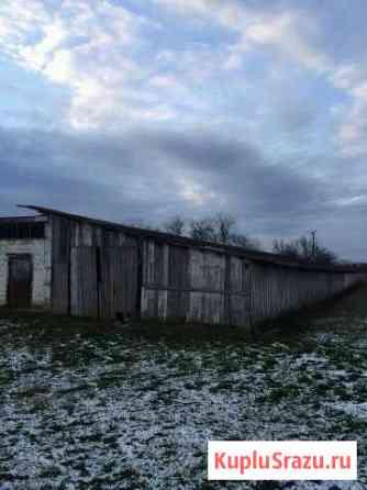 Продаю ферму Краснодар