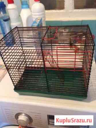 Клетка для грызунов Элиста