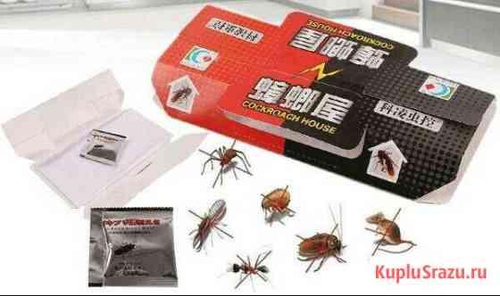 Ловушка для тараканов, муравьев, насекомых Красноярск