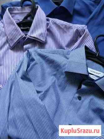 Мужские рубашки Черноголовка