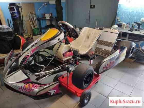 Картинг (безкоробка) Haase c двигателем Vortex KFJ Евпатория