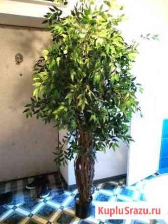 Искусственное дерево / растение Краснодар
