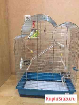 Продам клетку для попугаев Железнодорожный