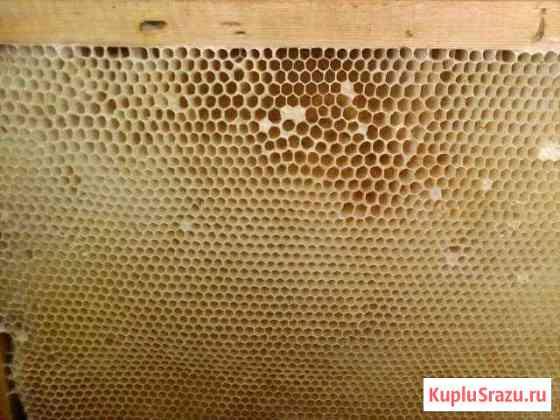 Продам суш для пчел Хабаровск