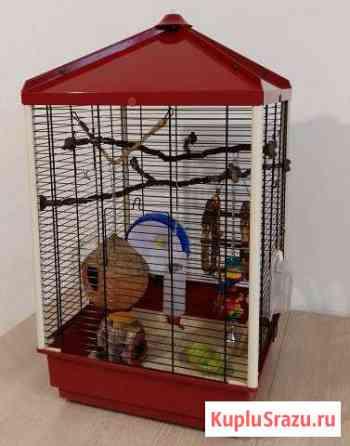 Клетка для животных и птиц Конаково