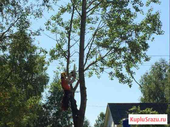 Обрезка деревьев Кратово