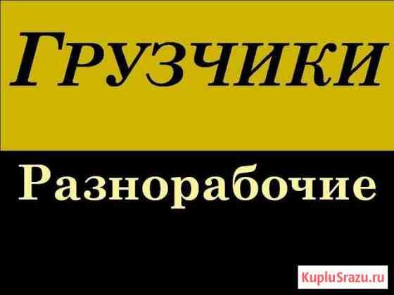 Услуги грузчик,разнорабочий Тамбов