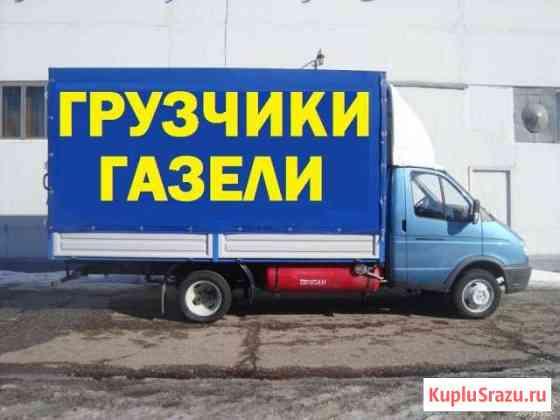 Газель Чайковский Чайковский
