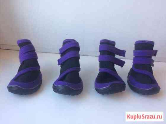 Обувь для собаки Комсомольск-на-Амуре