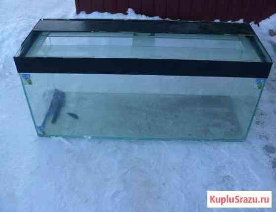 Аквариум 200 литров Томск