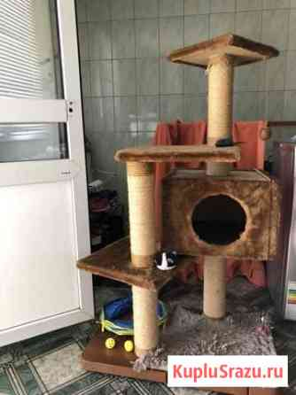 Домик для кошки Абакан