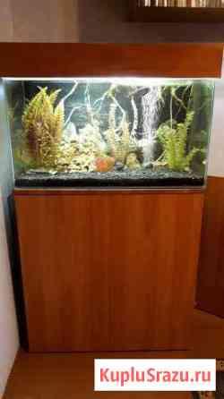 Продам аквариум Томск