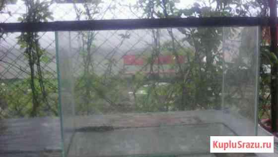 Аквариум Черногорск