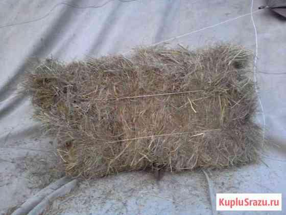Сено луговое, разнотравье, урожая этого года Орлово