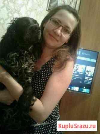 Животные собаки Дальнереченск
