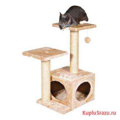 Домик для котёнка Саратов