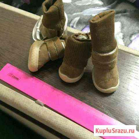 Ботиночки Абакан