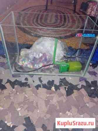Продаю аквариум Кострома