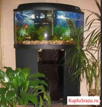 Продам аквариум Севастополь