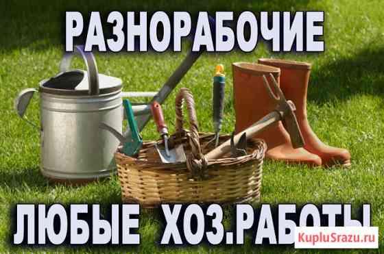 Разнорабочие, землекопы, помощь на даче Барнаул