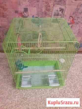 Клетка для попугаев Анапа