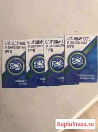 Билеты в аквапарк Питерленд Санкт-Петербург