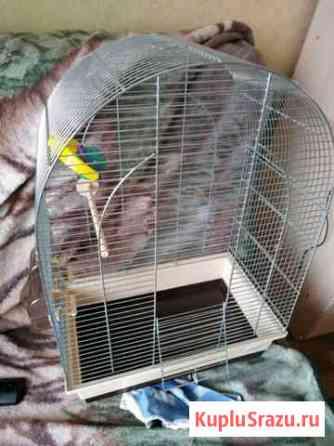 Клетка для попугая Большая Ижора