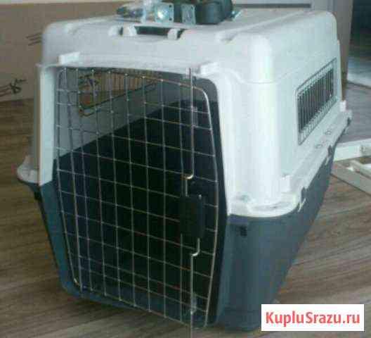 Переноска пластиковая для крупной собаки Анапа