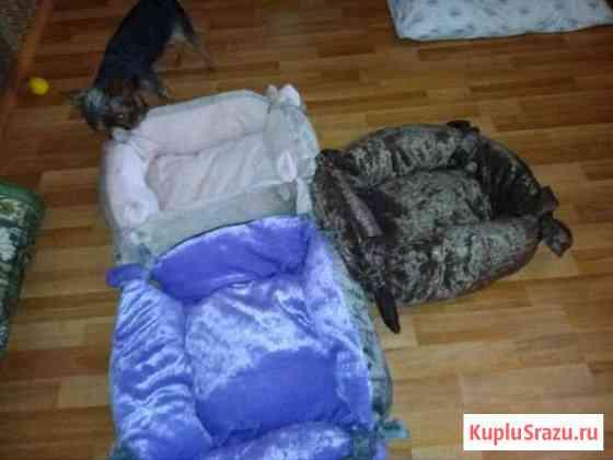 Лежаки для животных Анапа