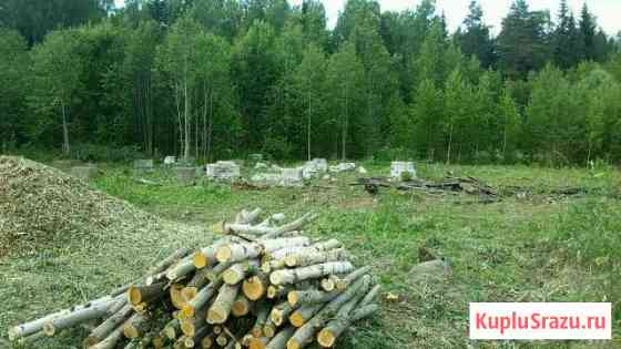Вырубка,опиливание деревьев очистка территории Тамбов