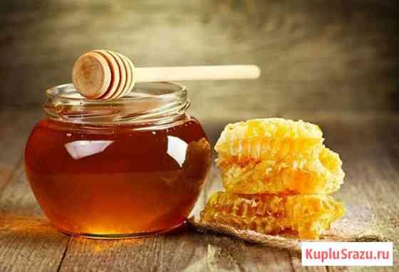 Мёд с личной пасеки Данков