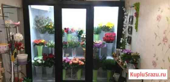 Камера холодильная для цветов Одинцово
