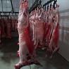 Говядина, баранина, мясо птицы, субпродукты в ассортименте