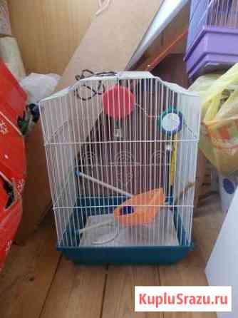 Клетки для попугаев Кострома