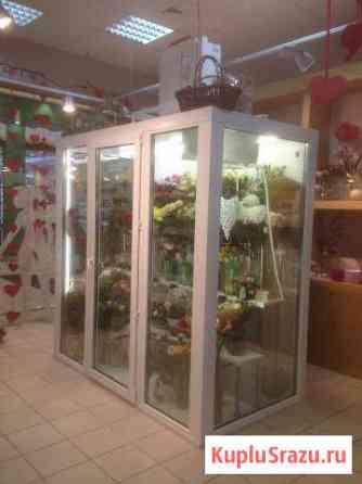Холодильная камера для цветов Под ключ Омск