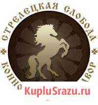 Конная база отдыха Саранск