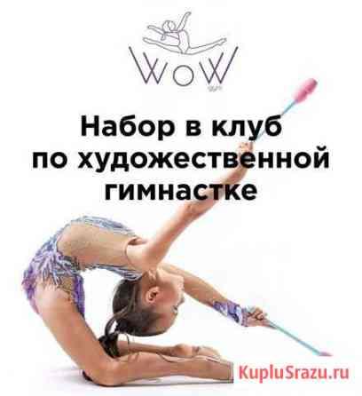 Художественная гимнастика Солнечногорск