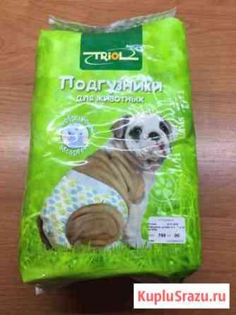 Подгузники для собак и кошек Петропавловск-Камчатский