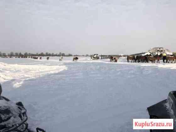 Ферма Ялуторовск