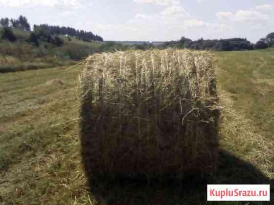 Сено и солома в рулонах по 350 кг Прямицыно