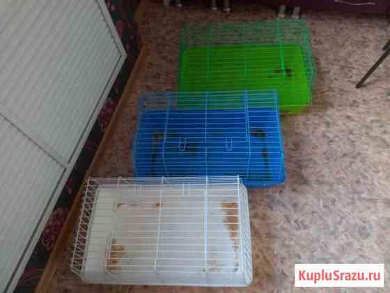 Клетки для крупных грызунов Оренбург