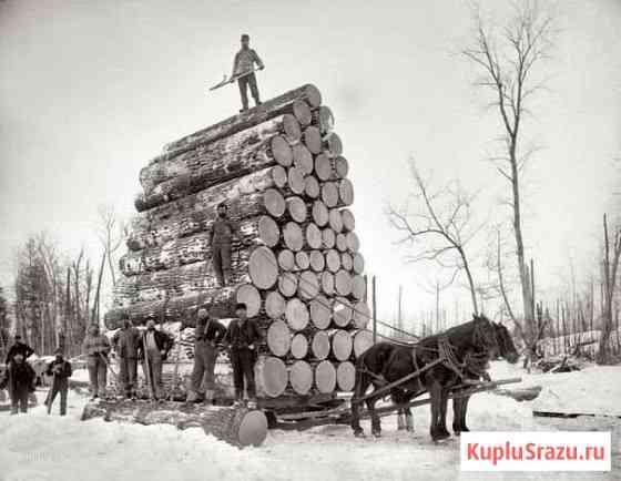 Строительный деревообрабатывающий бизнес Вологда