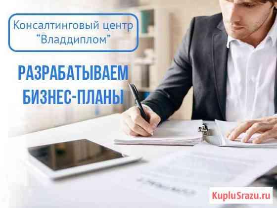 Разрабатываем бизнес-планы. Качественно Владивосток