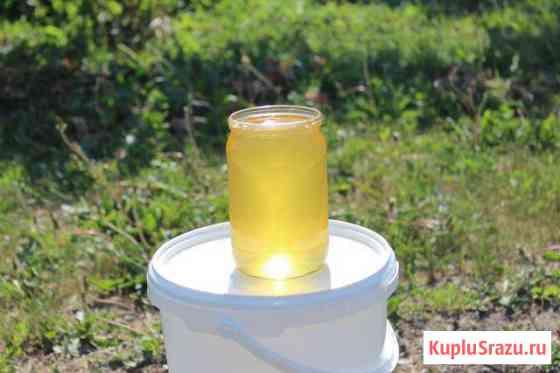 Мёд акации,черноклена,липа Верхний Мамон