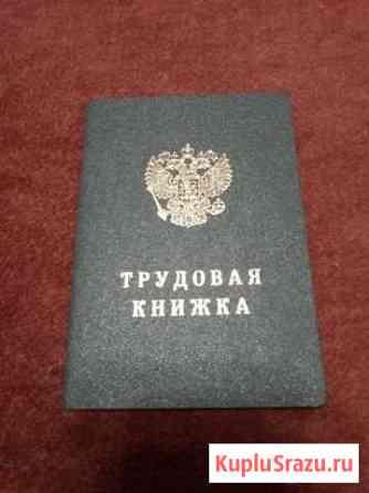 Трудовая книжка Омск