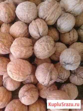 Грецкие орех Назрань
